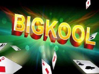 bigkool